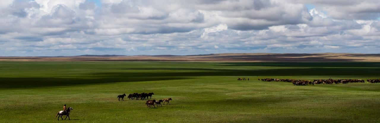 kazakh steppes
